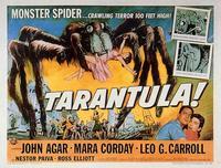 Tarantula - 11 x 14 Movie Poster - Style A