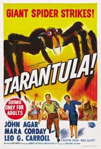 Tarantula - 11 x 17 Poster Australian Style B