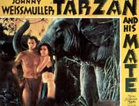Tarzan and His Mate - 11 x 14 Movie Poster - Style A