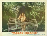 Tarzan Escapes - 11 x 14 Movie Poster - Style A