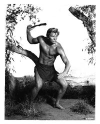 Tarzan The Ape Man - 8 x 10 B&W Photo #1