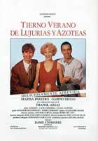 Tender Summer of Lust on the Rooftops - 43 x 62 Movie Poster - Spanish Style A