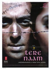 Tere Naam - 27 x 40 Movie Poster - Style A