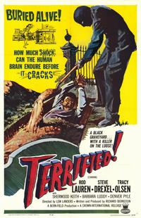 Terrified - 11 x 17 Movie Poster - Style A