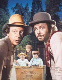 The Apple Dumpling Gang - 27 x 40 Movie Poster - Style C