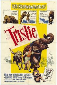 Bashful Elephant - 11 x 17 Movie Poster - Style A