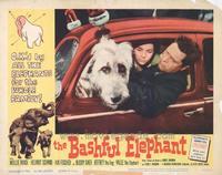 Bashful Elephant - 11 x 14 Movie Poster - Style B