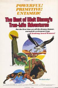 The Best of Walt Disneys True-Life Adventures - 27 x 40 Movie Poster - Style A