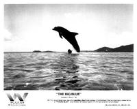 The Big Blue - 8 x 10 B&W Photo #8