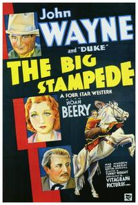 The Big Stampede - 27 x 40 Movie Poster - Style A