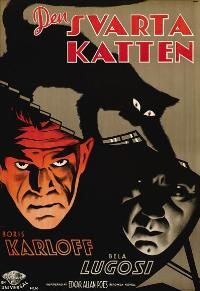 The Black Cat - 27 x 40 Movie Poster - Swedish Style A