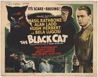 The Black Cat - 22 x 28 Movie Poster - Half Sheet Style A