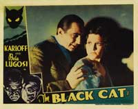 The Black Cat - 11 x 14 Movie Poster - Style B