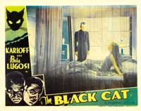 The Black Cat - 11 x 14 Movie Poster - Style C