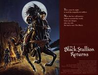 The Black Stallion Returns - 11 x 14 Movie Poster - Style A
