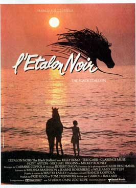 The Black Stallion Returns - 11 x 17 Movie Poster - French Style A