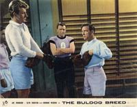 The Bulldog Breed - 11 x 14 Movie Poster - Style F