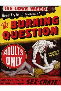 The Burning Question - 27 x 40 Movie Poster - Style A