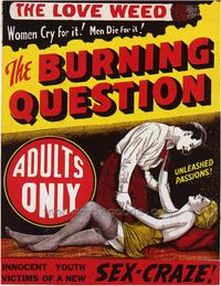 The Burning Question - 43 x 62 Movie Poster - Bus Shelter Style A