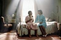 The Color Purple - 8 x 10 Color Photo #14