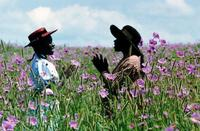 The Color Purple - 8 x 10 Color Photo #17