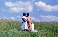 The Color Purple - 8 x 10 Color Photo #21