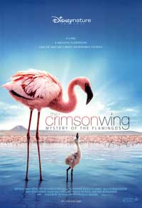 The Crimson Wing: Mystery of the Flamingos - 27 x 40 Movie Poster - Style A