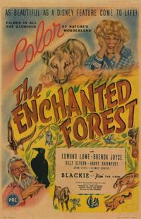 The Enchanted Forest - 11 x 17 Movie Poster - Style A