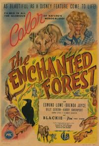The Enchanted Forest - 27 x 40 Movie Poster - Style A