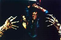 The Evil Dead - 8 x 10 Color Photo #1