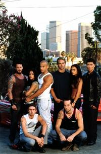 The Fast and the Furious - 8 x 10 Color Photo #1
