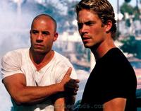 The Fast and the Furious - 8 x 10 Color Photo #17
