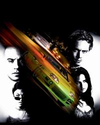 The Fast and the Furious - 8 x 10 Color Photo #15
