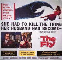 Fly, The - 11 x 14 Movie Poster - Style A