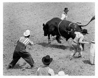 The Great American Cowboy - 8 x 10 B&W Photo #1