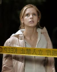 The Grudge - 8 x 10 Color Photo #12