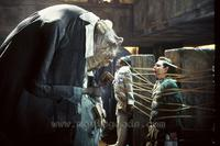 The Hitchhiker's Guide to the Galaxy - 8 x 10 Color Photo #31