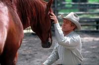 The Horse Whisperer - 8 x 10 Color Photo #2