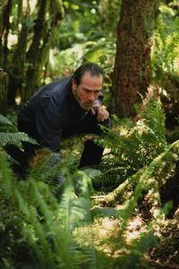 The Hunted - 8 x 10 Color Photo #13