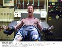 The Incredible Hulk - 8 x 10 Color Photo #21