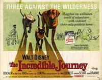 The Incredible Journey - 11 x 14 Movie Poster - Style A