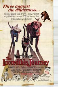 The Incredible Journey - 27 x 40 Movie Poster - Style A