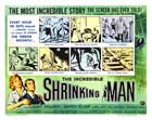 The Incredible Shrinking Man - 22 x 28 Movie Poster - Half Sheet Style A
