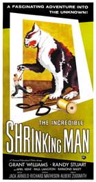 The Incredible Shrinking Man - 20 x 40 Movie Poster - Style A