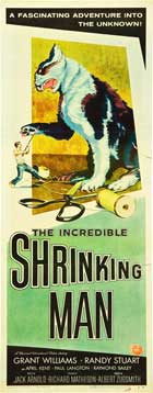 The Incredible Shrinking Man - 14 x 36 Movie Poster - Insert Style A