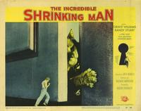 The Incredible Shrinking Man - 11 x 14 Movie Poster - Style D