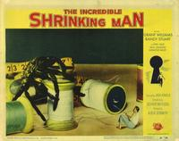 The Incredible Shrinking Man - 11 x 14 Movie Poster - Style F