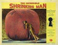 The Incredible Shrinking Man - 11 x 14 Movie Poster - Style G