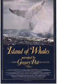 The Island of Whales - 27 x 40 Movie Poster - Style A