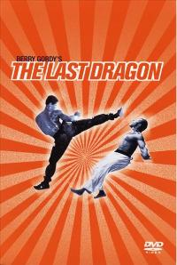 The Last Dragon - 43 x 62 Movie Poster - Bus Shelter Style C